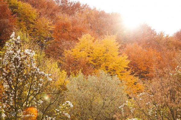 Есенно топло