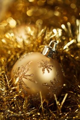 15 дни до Коледа