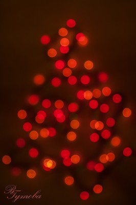 17 дни Коледа